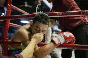 boxer smelling salts
